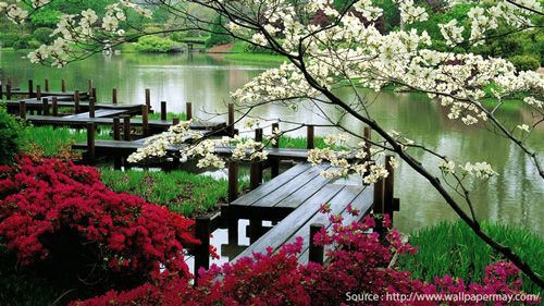nature_lover1